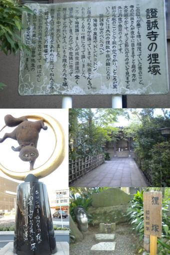 【季節の一枚】木更津のタヌキばやし