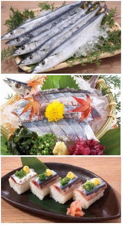 チムニー 日本一早い秋刀魚、解禁後すぐに水揚げ直送