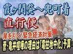 緊急経済対策:菅・亀井喧嘩の理由は電柱地中化予算!バトルの後遺症が尾を引く